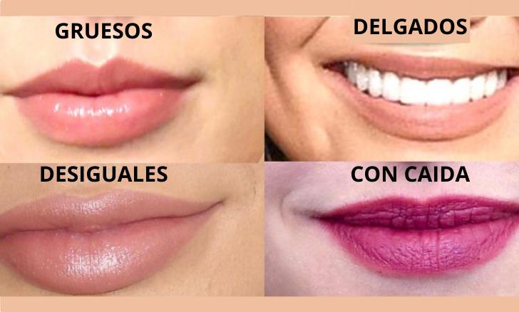 Formas de labios